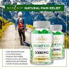 (2 Pack) Hemp Oil Capsules Pills – 5000 MG of Pure Hemp Extract Per Bottle – Pain, Stress & Anxiety Relief – Natural Sleep & Mood Support – Made in The USA – Maximum Value – Rich in Omega 3,6,& 9,